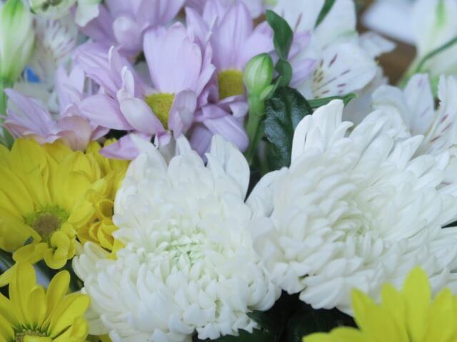 別れ花 ブログ01